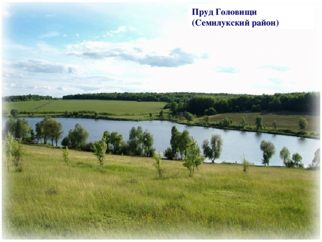 Пруд Головищи (Семилукский район)