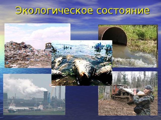 Экологическое состояние