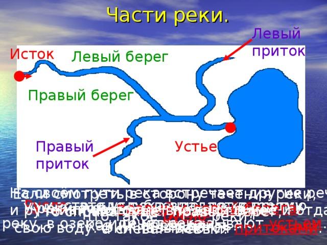 Части реки. Левый приток Исток Левый берег Правый берег Устье Правый приток На своём пути река встречает другие речки и ручейки, которые впадают в неё и отдают  свою воду. Они называются притоками . Если смотреть в сторону течения реки, то справа будет правый берег, а слева – левый. То место, где река впадает в другую реку, в озеро или море, называют устьем . Русло –это углубление, по которому течёт река. У реки есть правый и левый берега . Как их определить? Как называют начало реки? Что такое устье реки? Что такое русло реки?