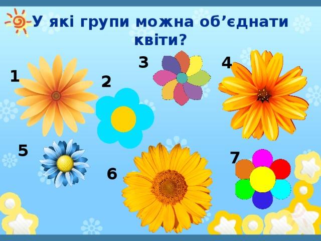 У які групи можна об'єднати квіти? 3 4 1 2 5 7 6