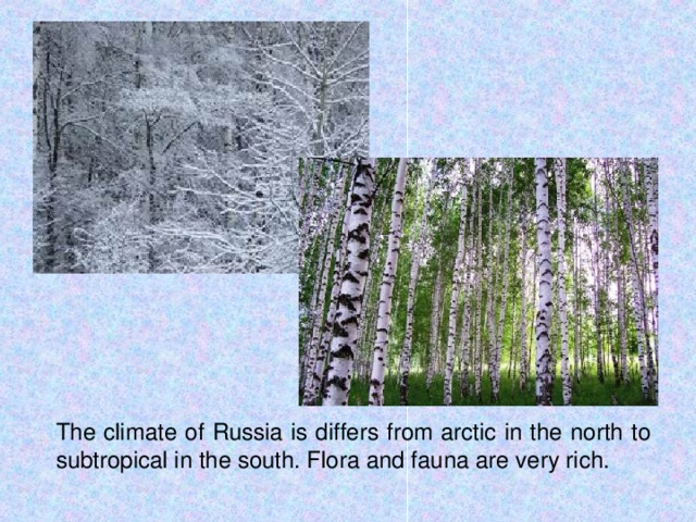 The climate of Russia is differs from arctic in the north to subtropical in the south. Flora and fauna are very rich.