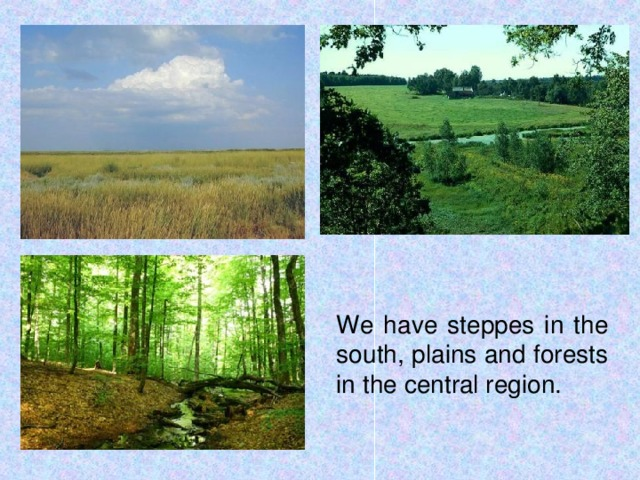 We have steppes in the south, plains and forests in the central region.