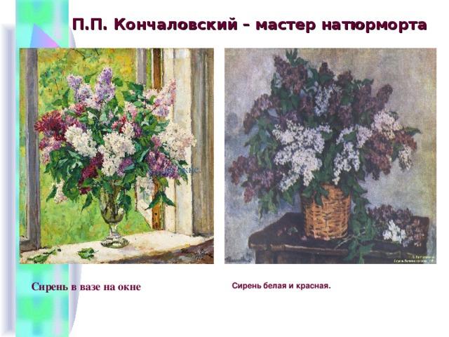 П.П. Кончаловский – мастер натюрморта на окне. Сирень в вазе на окне  Сирень белая и красная.