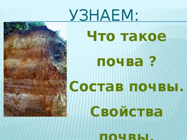Узнаем: Что такое почва ? Состав почвы. Свойства почвы. Как образуется почва?