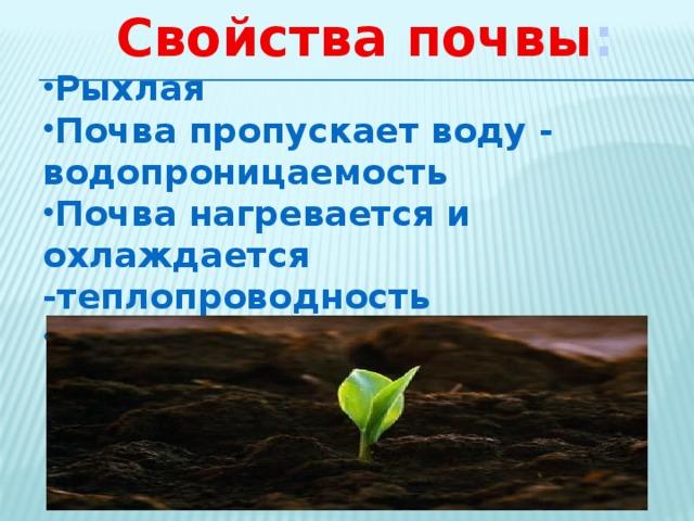 Свойства почвы : Рыхлая Почва пропускает воду - водопроницаемость Почва нагревается и охлаждается -теплопроводность Плодородие