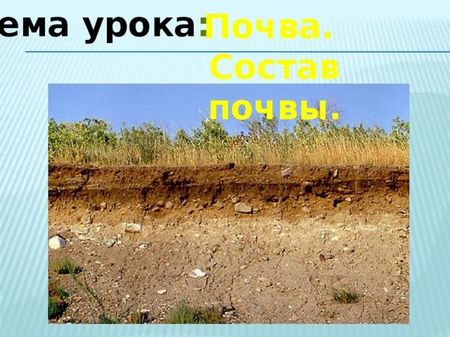 Тема урока : Почва. Состав почвы.