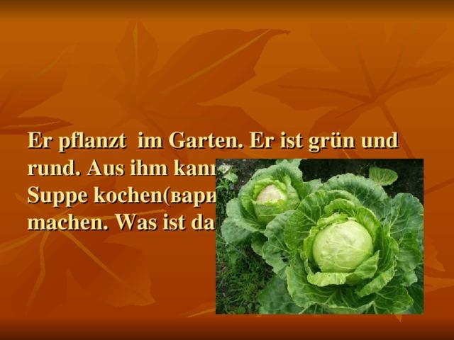 Er pflanzt im Garten. Er ist grün und rund. Aus ihm kann man (можно) die Suppe kochen ( варить ) und Salate machen. Was ist das?