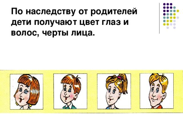 По наследству от родителей дети получают цвет глаз и волос, черты лица.