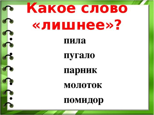 Какое слово «лишнее» ?