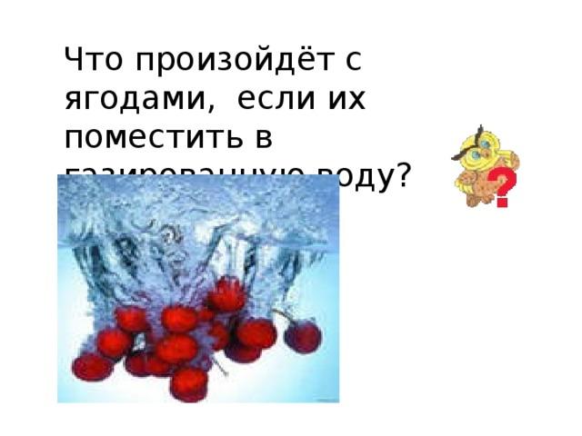 Что произойдёт с ягодами, если их поместить в газированную воду?