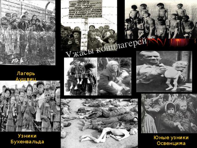 Ужасы концлагерей Узники фашизма в Карелии, г.Петрозаводск Лагерь Аушвиц Узники Бухенвальда Юные узники Освенцима