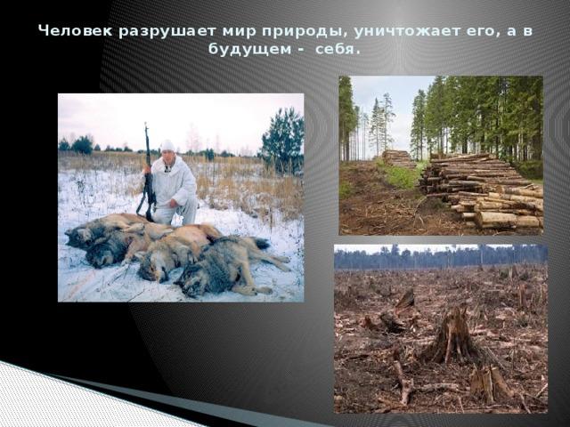 Человек разрушает мир природы, уничтожает его, а в будущем - себя.