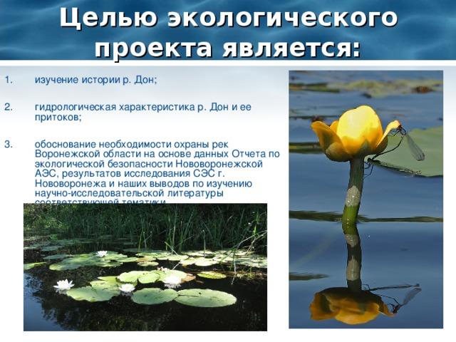 Целью экологического проекта является:
