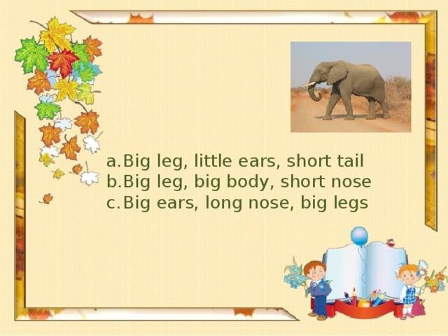 Big leg, little ears, short tail Big leg, big body, short nose Big ears, long nose, big legs