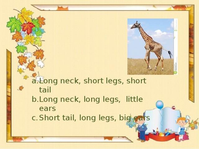 Long neck, short legs, short tail Long neck, long legs, little ears Short tail, long legs, big ears