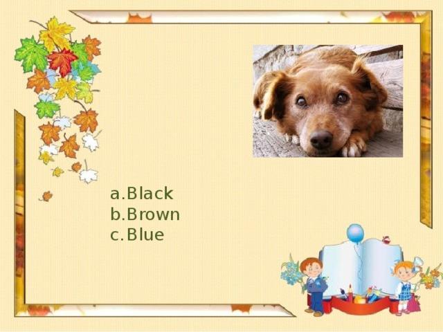 Black Brown Blue