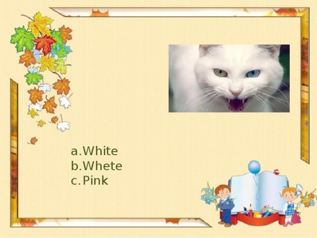 White Whete Pink