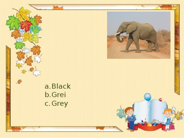 Black Grei Grey