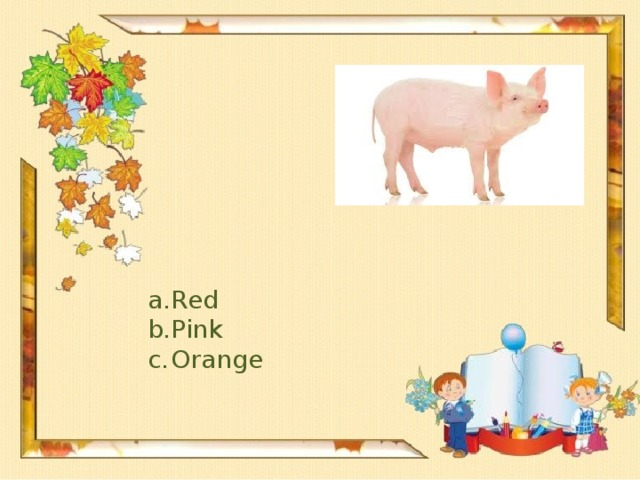 Red Pink Orange