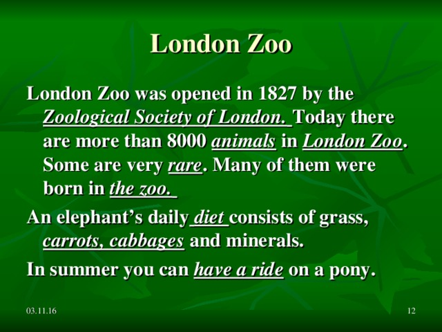 London Zoo London Zoo was opened in 1827 by the Zoological Society of London.  Today there are more than 8000 animals in London Zoo . Some are very rare . Many of them were born in the zoo.  An elephant's daily  diet consists of grass, carrots, cabbages and minerals. In summer you can have a ride on a pony. 03.11.16