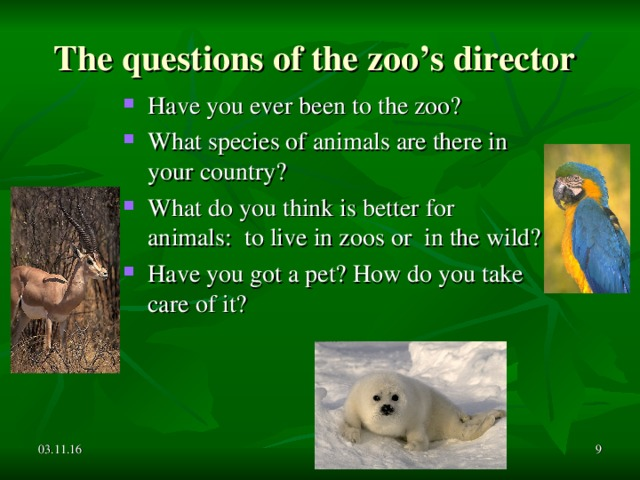The questions of the zoo's director Have you ever been to the zoo? What species of animals are there in your country? What do you think is better for animals: to live in zoos or in the wild? Have you got a pet? How do you take care of it?    03.11.16