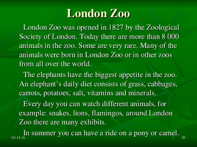 London Zoo  London Zoo was opened in 1827 by the Zoological Society of London. Today there are more than 8 000 animals in the zoo. Some are very rare. Many of the animals were born in London Zoo or in other zoos from all over the world.  The elephants have the biggest appetite in the zoo. An elephant's daily diet consists of grass, cabbages, carrots, potatoes, salt, vitamins and minerals.  Every day you can watch different animals, for example: snakes, lions, flamingos, around London Zoo there are many exhibits.  In summer you can have a ride on a pony or camel. 03.11.16