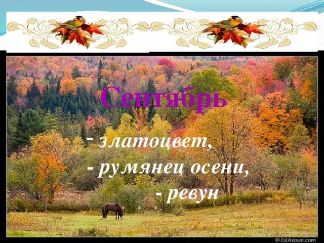 Сентябрь  златоцвет, - румянец осени, - ревун  * * *.-