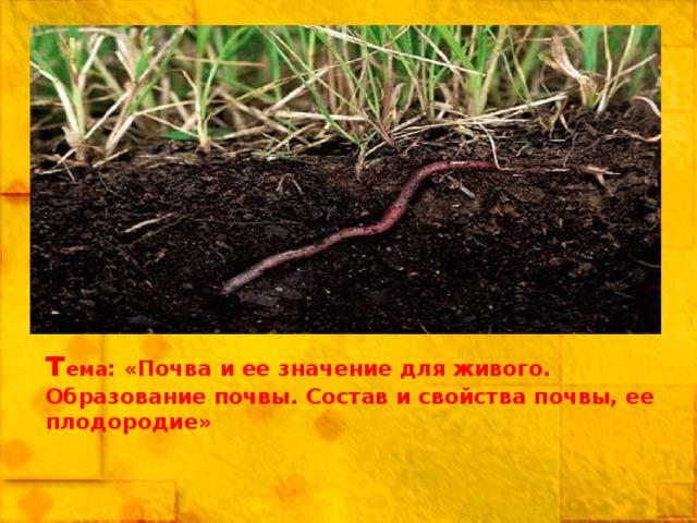 т ема : «Почва и ее значение для живого. Образование почвы. Состав и свойства почвы, ее плодородие»