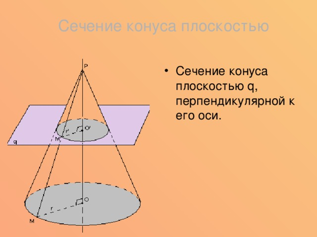 Сечение конуса плоскостью