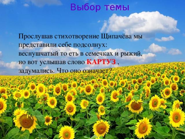 Выбор темы Прослушав стихотворение Щипачёва мы представили себе подсолнух: веснушчатый то еть в семечках и рыжий, но вот услышав слово КАРТУЗ , задумались. Что оно означает?
