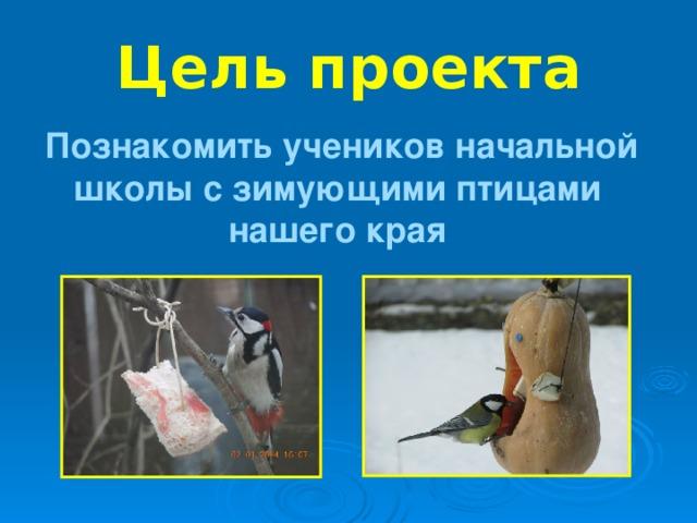 Цель проекта  Познакомить учеников начальной школы с зимующими птицами нашего края