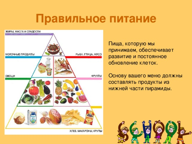 Правильное питание Пища, которую мы принимаем, обеспечивает развитие и постоянное обновление клеток. Основу вашего меню должны составлять продукты из нижней части пирамиды.