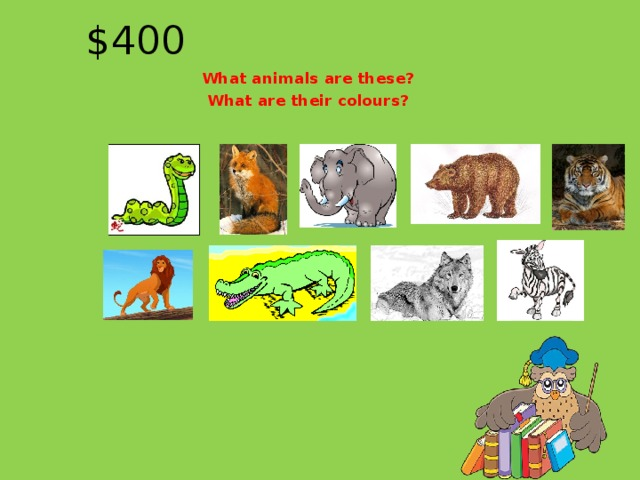 $400 What animals are these? What are their colours?