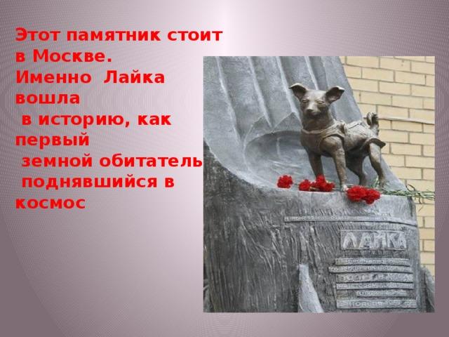 Этот памятник стоит в Москве. Именно Лайка вошла  в историю, как первый  земной обитатель,  поднявшийся в космос