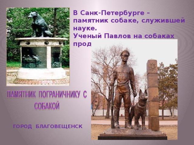 В Санк-Петербурге – памятник собаке, служившей науке. Ученый Павлов на собаках проделывал свои опыты. ГОРОД БЛАГОВЕЩЕНСК