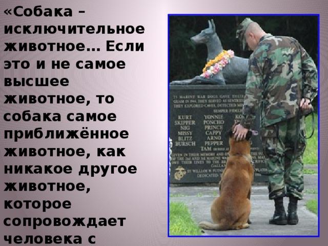«Собака – исключительное животное… Если это и не самое высшее животное, то собака самое приближённое животное, как никакое другое животное, которое сопровождает человека с доисторических времён… Собака вывела человека в люди». И.П.Павлов