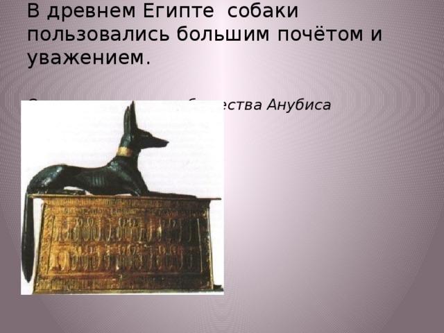 В древнем Египте собаки пользовались большим почётом и уважением.   Статуя египетского божества Анубиса