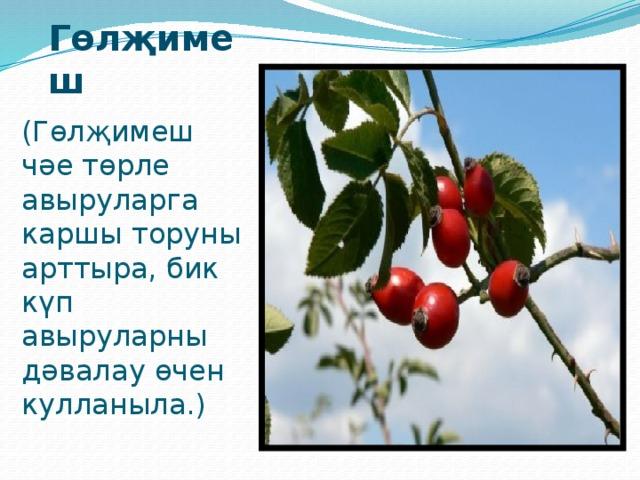 Кишер  Кара җиләк Кишердә А витамин бар, ә кара җиләктә күрү сәләтен яхшырта торган витамин бар.