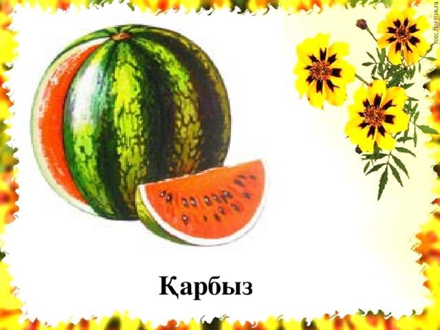 Қарбыз