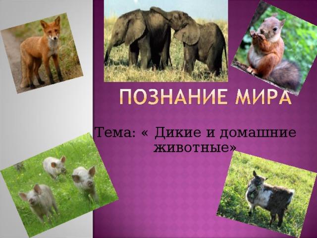 Тема: « Дикие и домашние животные»