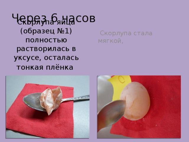 Через 6 часов  Скорлупа стала мягкой, Скорлупа яйца (образец №1) полностью растворилась в уксусе, осталась тонкая плёнка