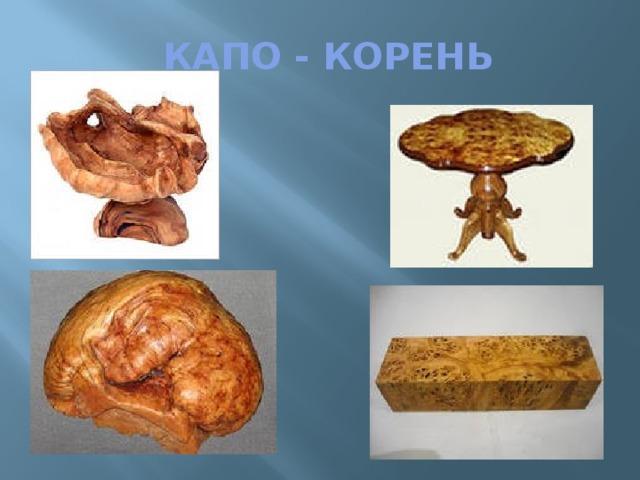 КАПО - КОРЕНЬ