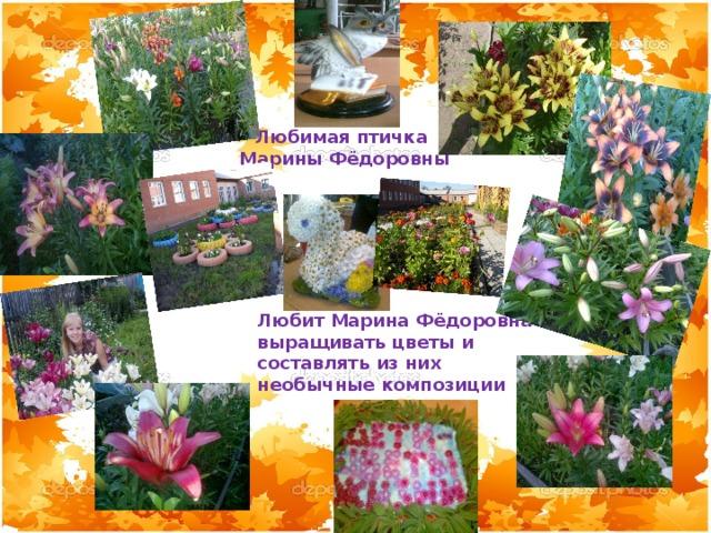 Любимая птичка Марины Фёдоровны Любит Марина Фёдоровна выращивать цветы и составлять из них необычные композиции