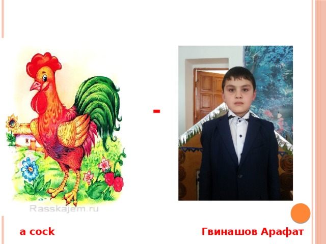 - a cock Гвинашов Арафат