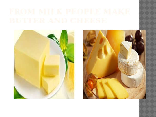 From milk people make butter and cheese