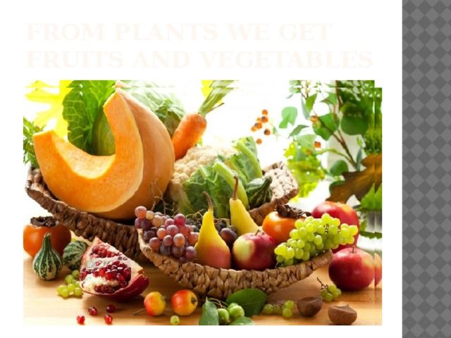 From plants we get fruits and vegetables