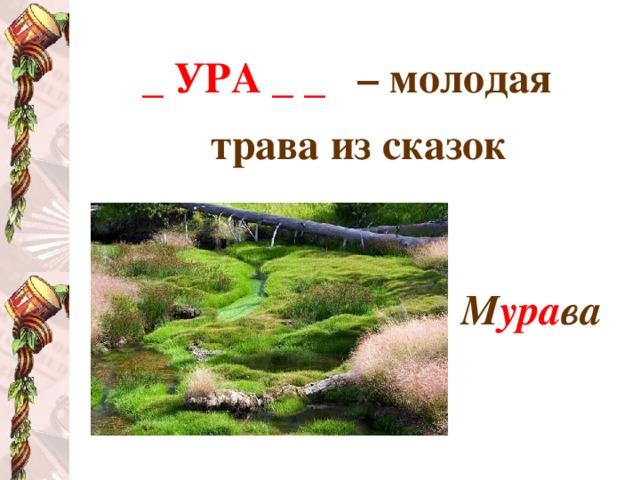 _ УРА _ _  – молодая трава из сказок   М ура ва