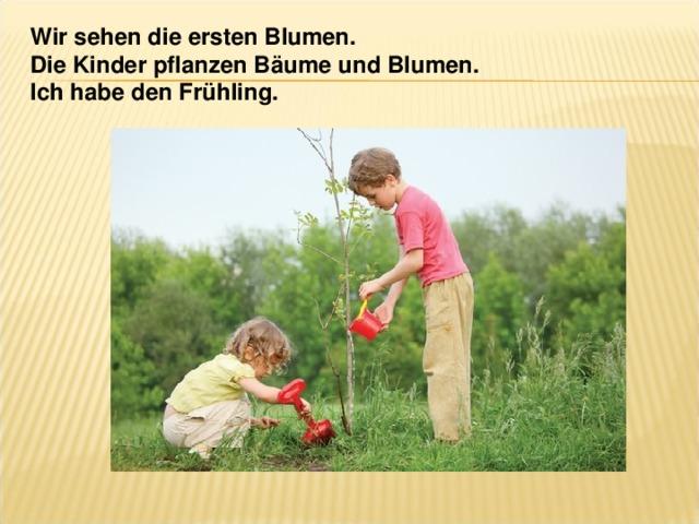 Wir sehen die ersten Blumen. Die Kinder pflanzen Bäume und Blumen. Ich habe den Frühling.