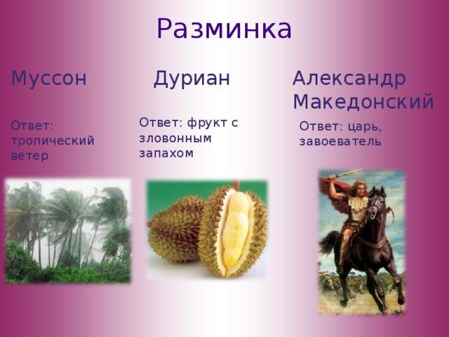 Разминка Муссон Дуриан Александр Македонский Ответ: фрукт с зловонным запахом Ответ: тропический ветер Ответ: царь, завоеватель