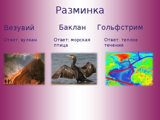Разминка Баклан Гольфстрим Везувий Ответ: вулкан Ответ: теплое течение Ответ: морская птица